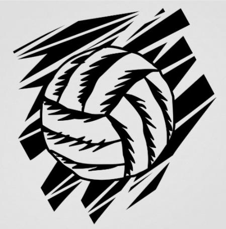 mistrzostwa świata w siatkówce, Polska 2014